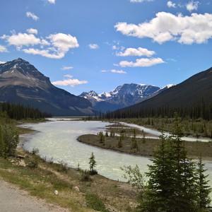 Jasper - Saskatchewan Crossing - Dag 18 - Foto