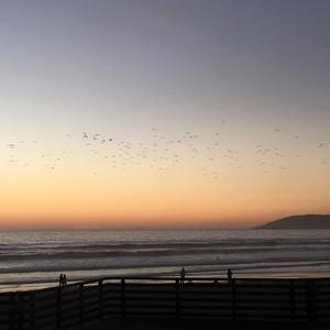 Big Sur naar Pismo Beach - Dag 20 - Foto