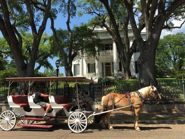 Natchez - Mississippi - Amerika - Doets Reizen