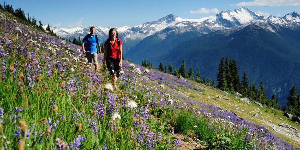 High Note Trail in Whistler