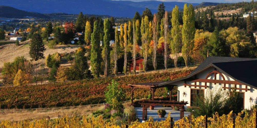 Ancient Hill Estate Winery - Kelowna - Okanagan Valley - British Columbia - Canada - Doets Reizen