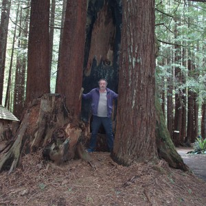Crescent City / Redwoods NP - Dag 24 - Foto