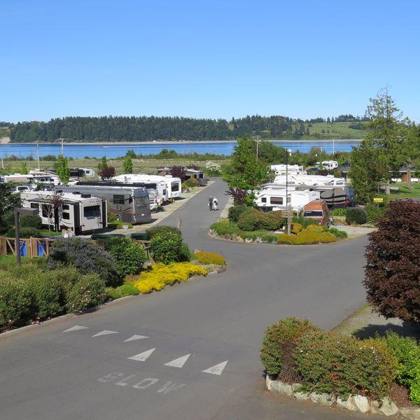 Oceanside RV Resort, uitzicht op de camping