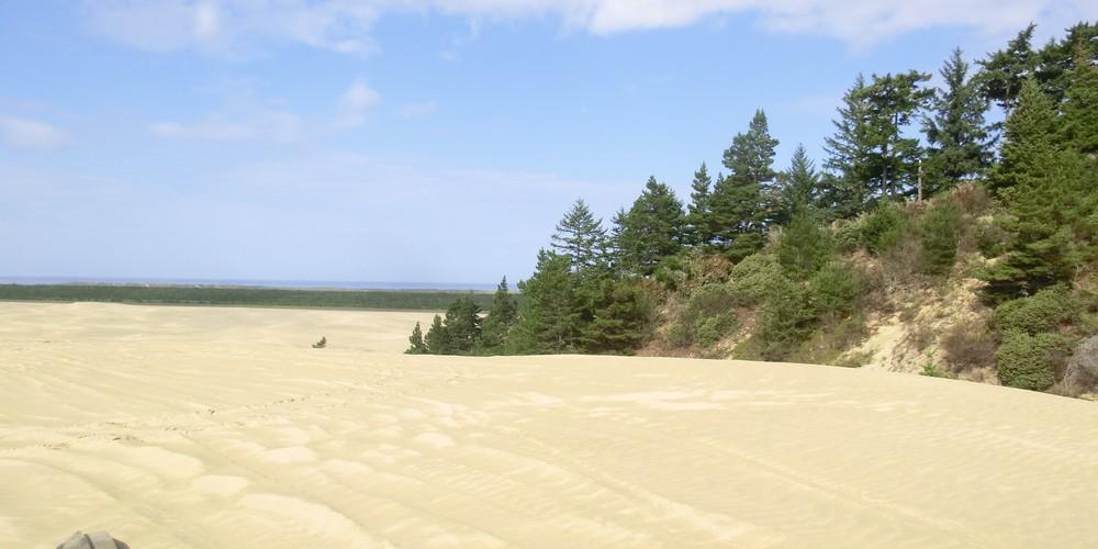 Sand Dunes - Florence - Oregon - Doets Reizen