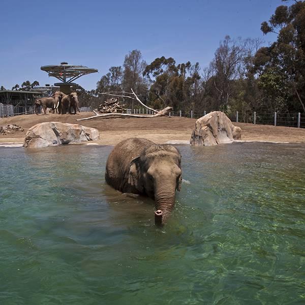 Balbao Park - San Diego - California - Amerika - Doets Reizen