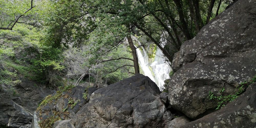 Big Sur - Salmon Creek Trail