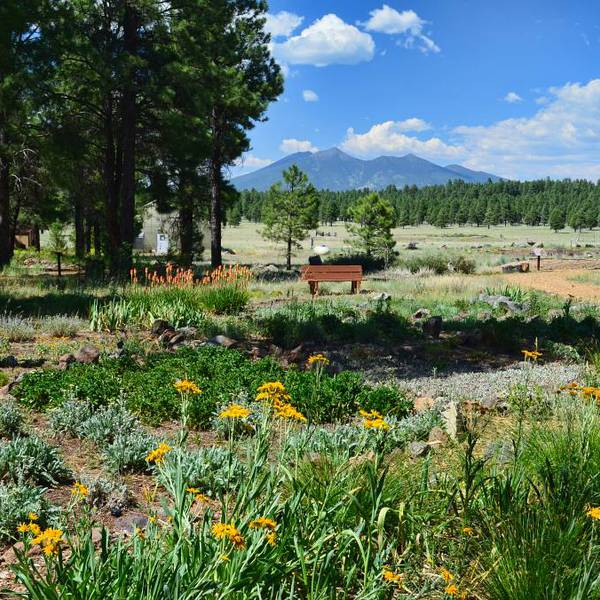 Arboretum - Flagstaff - Arizona - Doets Reizen