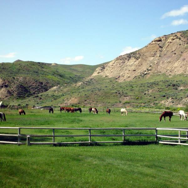 Ranch Ucross - Wyoming - Doets Reizen