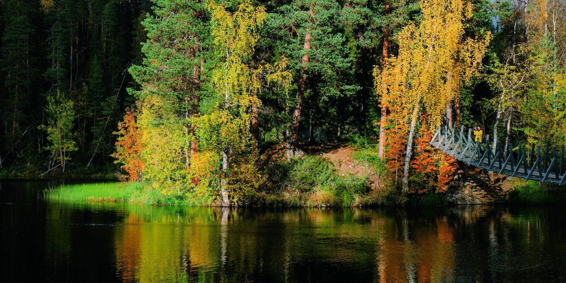 Oulanka National Park - Doets Reizen - Vakantie Finland - Credits VisitFinland