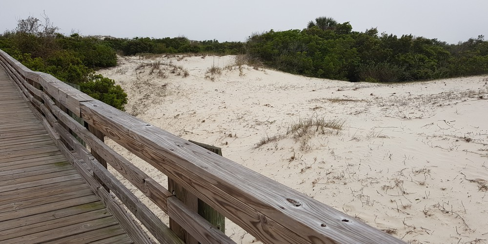 Cumberland Island National Seashore - Georgia - Amerika - Doets Reizen