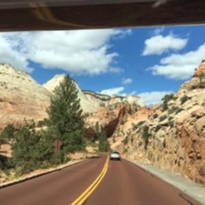 Zion national park - Dag 12 - Foto