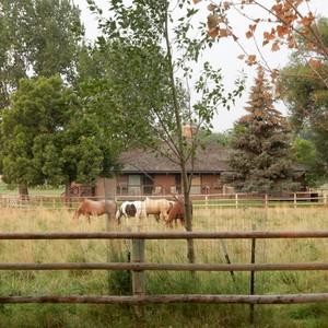 Op weg naar de ranch in Ucross - Dag 9 - Foto