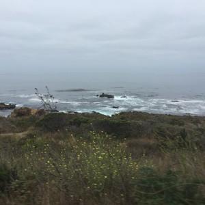 Van de walvissen naar de beach - Dag 21 - Foto