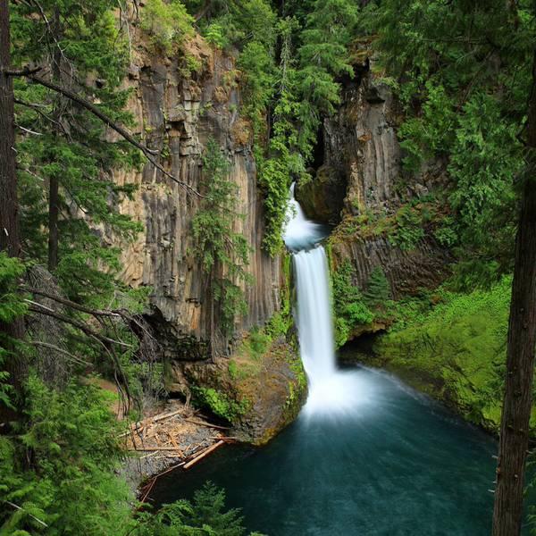 Forest Park - Portland - Oregon - Doets Reizen
