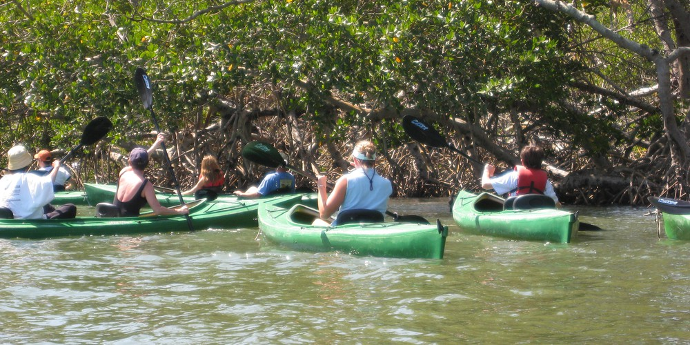 Kajakken Sanibel Island - Florida - Doets Reizen