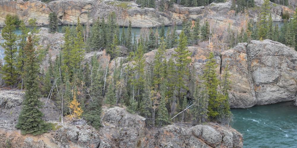 Miles Canyon - Whitehorse - Yukon - Canada - Doets Reizen