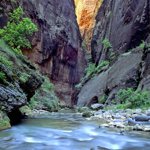 The Narrows, Zion NP in Utah