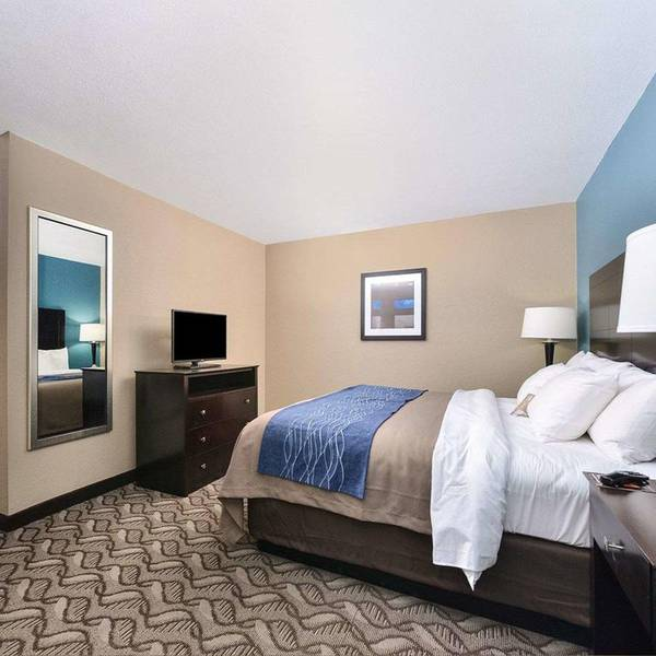 Comfort Inn & Suites Springfield - kamer