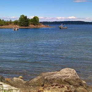 Telegraph Cove - Parksville - Dag 10 - Foto