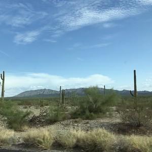 Van California naar Arizona, totaal anders! - Dag 11 - Foto
