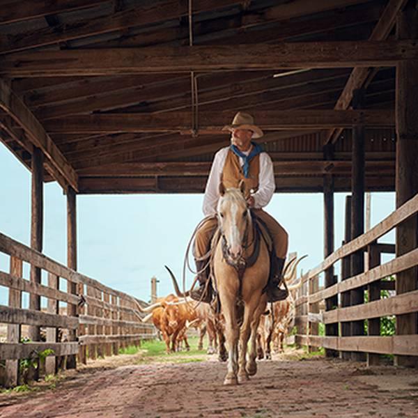 Texas - Sfeer - Doets Reizen