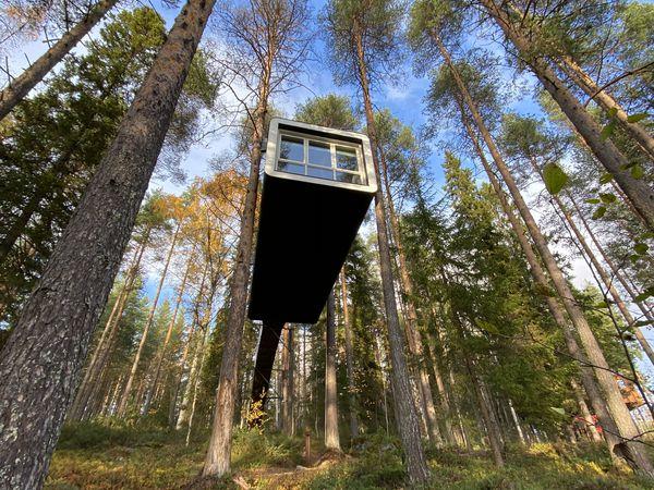 Elske Doets in Zweden - Treehotel Zweden - Treehotel Sweden - Treehotel - Vakantie Zweden - Doets Reizen