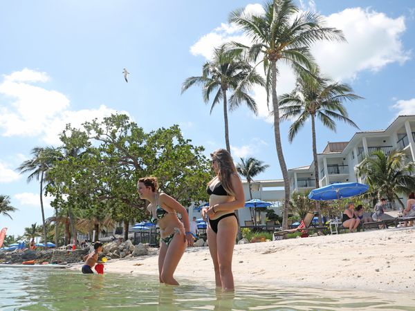 Pelican Cove Resort - The Keys - Florida - Doets Reizen
