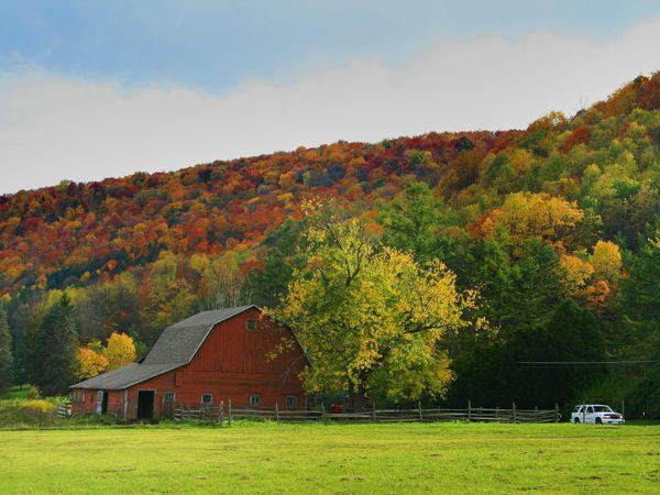 De herfstkleuren bij Port Allegany, Pennsylvania