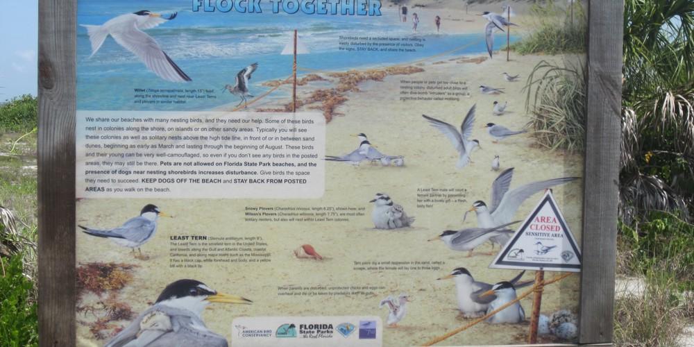 Cayo Costa State Park Florida