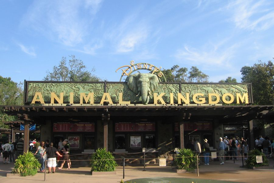 Animal Kingdom - Orlando - Florida - Doets Reizen