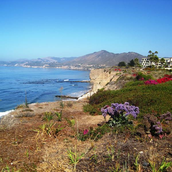 Central Coast Area - California - Amerika - Doets Reizen