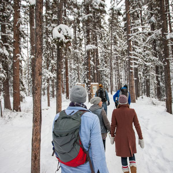 Wintersport - Icewalk Johnston Canyon - Banff - Lake Louise - Alberta - Canada - Doets Reizen