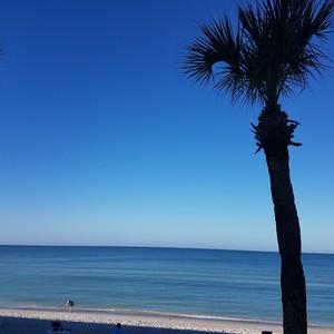 Van Sarasota naar Naples - Dag 24 - Foto