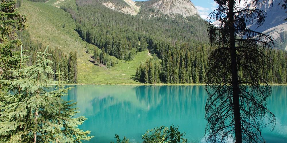 Emerald Lake - Yoho National Park - British Columbia - Canada - Doets Reizen