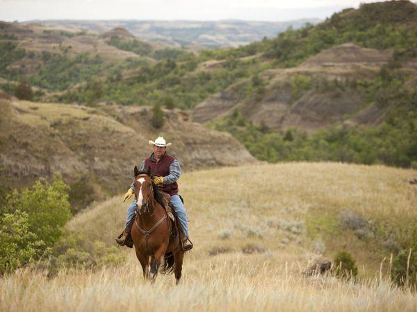 Theodore Roosevelt National Park - North Dakota - Amerika - Doets Reizen
