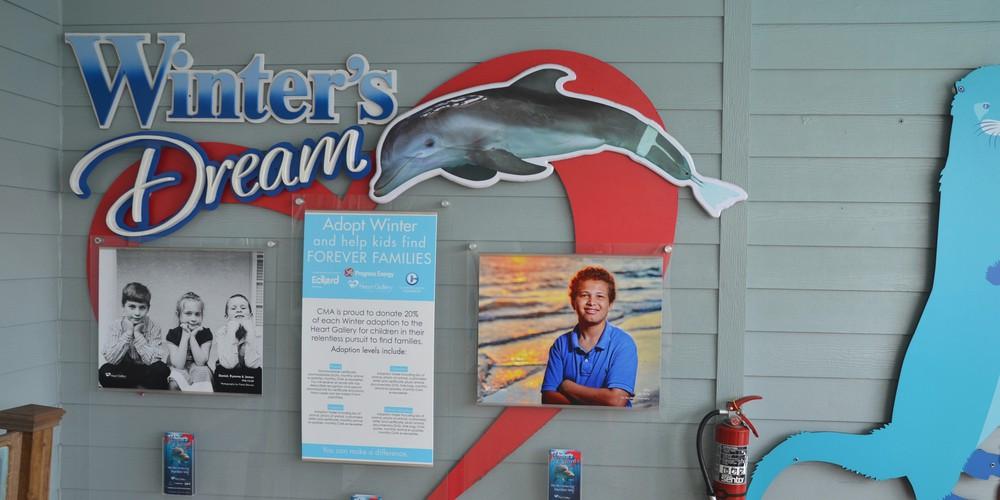 Clearwater Marine Aquarium Florida