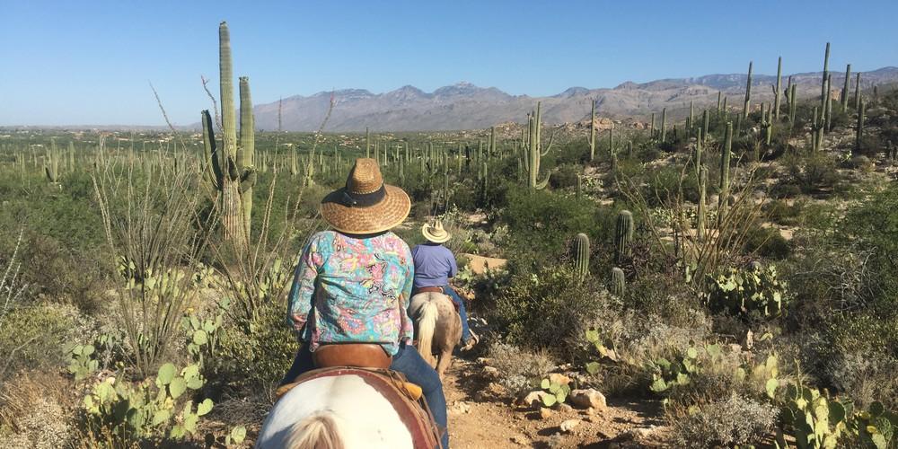Paardrijden in Tucson, Arizona