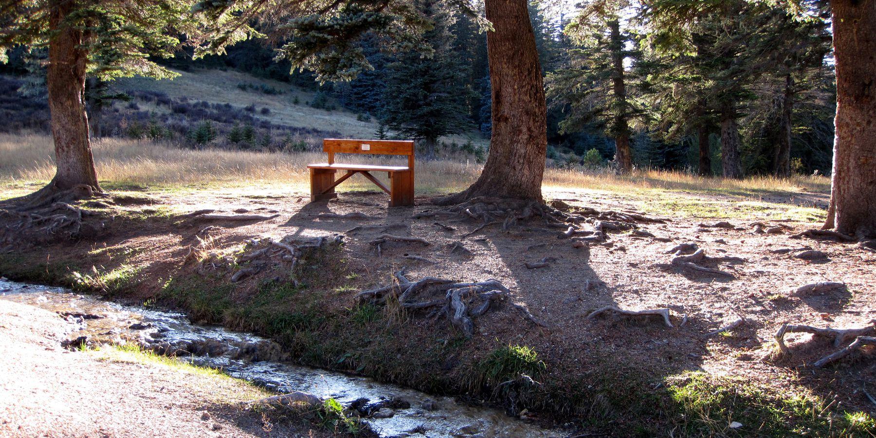 Cloudcroft - New Mexico - Amerika - Doets Reizen