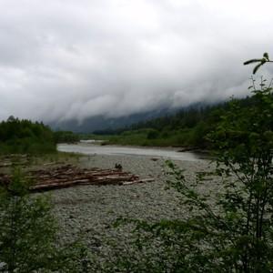 Reisdag 3: Quinault en omgeving - Dag 3 - Foto