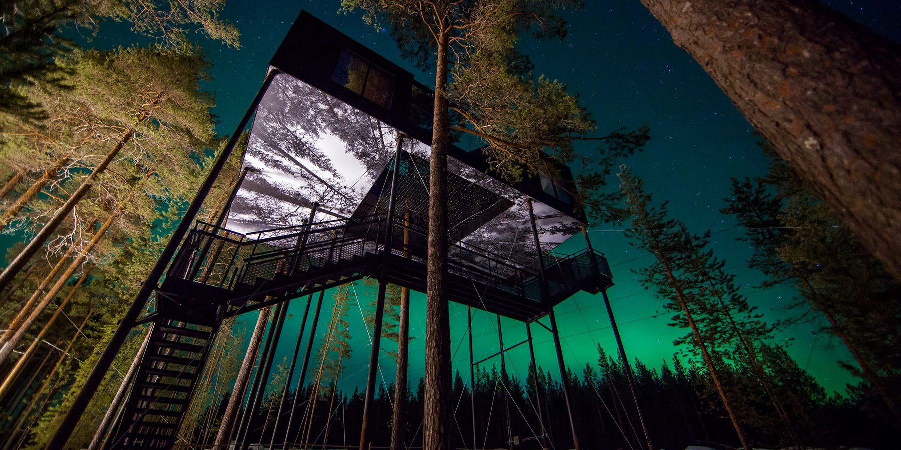 Treehotel in Zweden - Vakantie Zweden - Doets Reizen