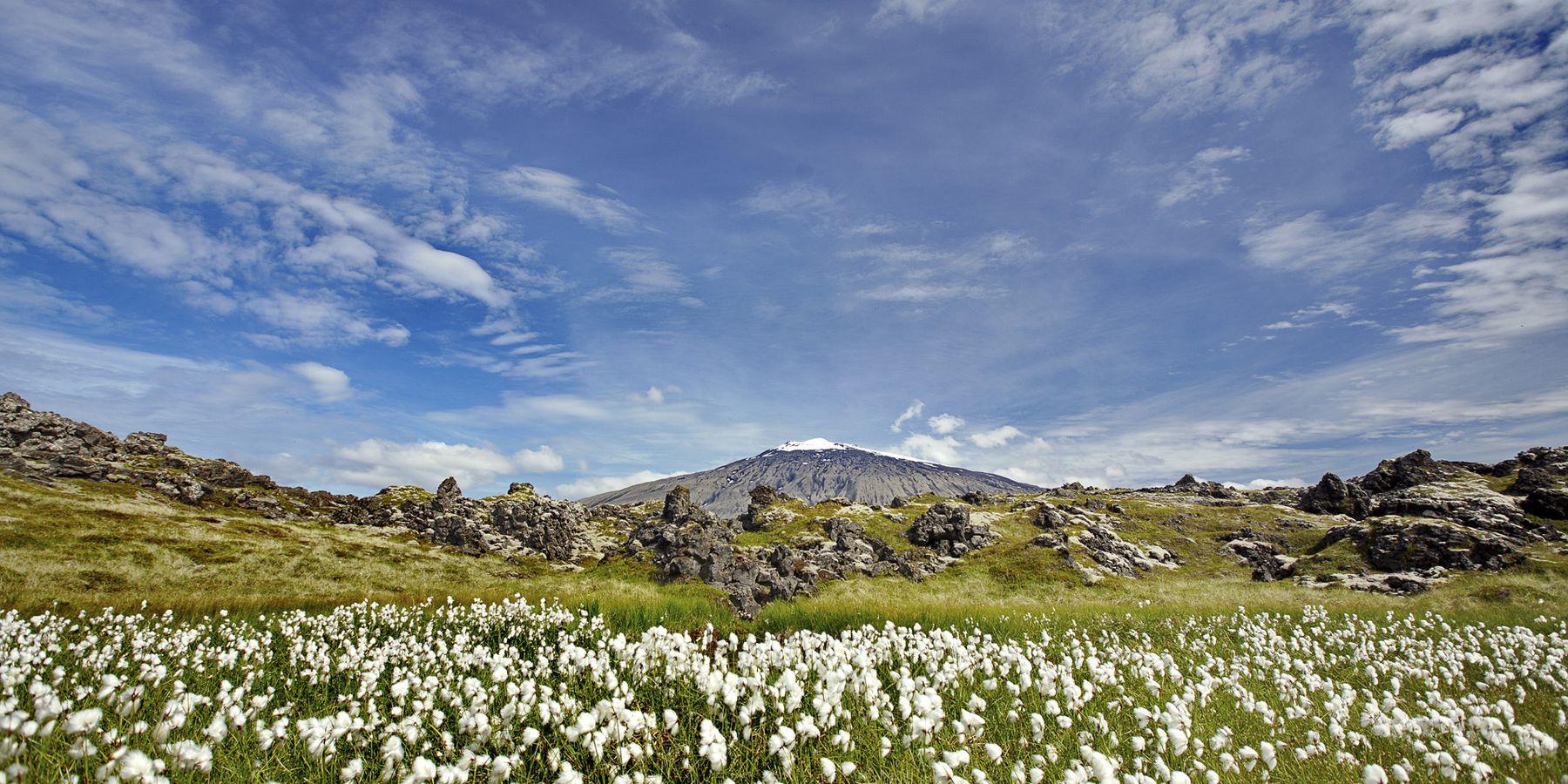 Snæfellsjökull National Park - IJsland - Doets Reizen