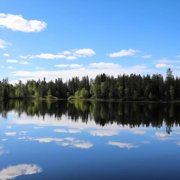 Zomer Fins Lapland