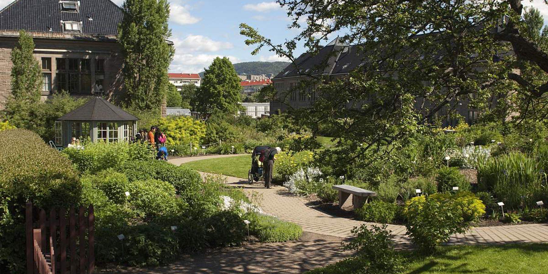 Natural History Museum Oslo - Doets Reizen - Vakantie Noorwegen - Credits VisitNorway