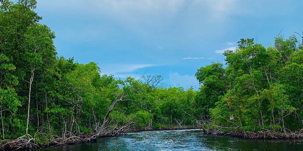 Airboat Tour Everglades National Park - Florida - Doets Reizen