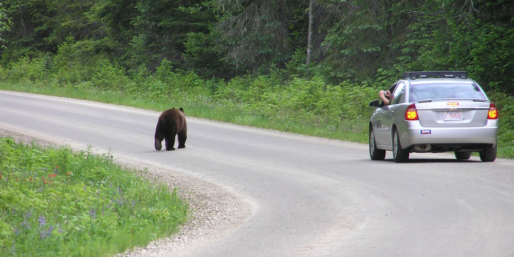 Wells Gray Provincial Park British Columbia