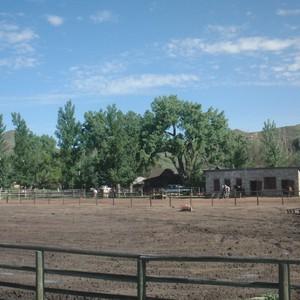 Van Cody naar the Ranch at Ucross - Dag 17 - Foto