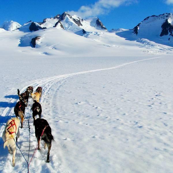 Knik Glacier - Alaska - Doets Reizen
