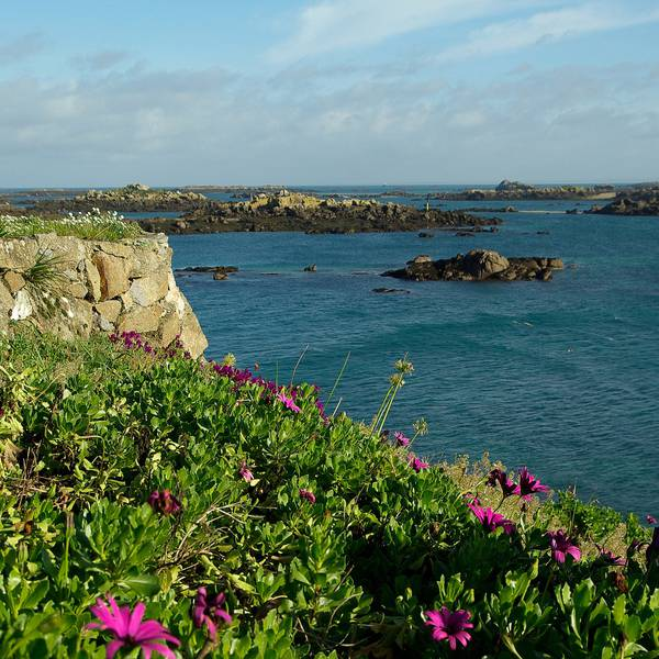 Chausey Islands Normandie Doets Reizen (2) - Afbeelding van jacqueline macou via Pixabay