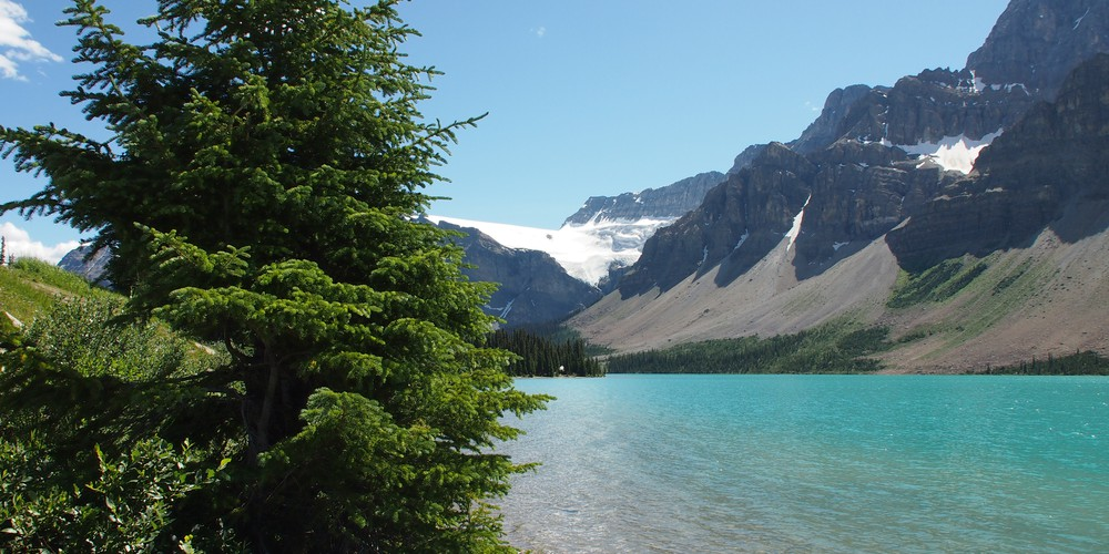 Icefields Parkway Bow Lake