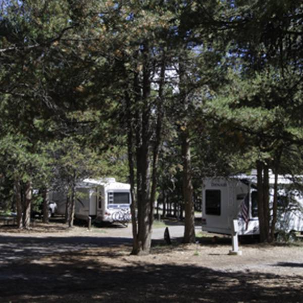 Colter Bay RV Park 2